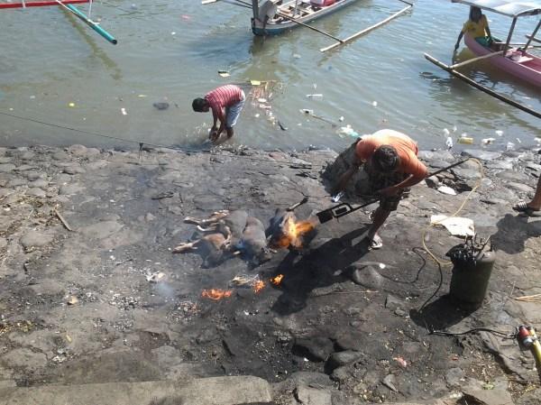 bakar anjing di belakang pasar bersehati manado